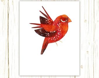 Strawberry Finch Print -- bird art -- colorful bird art by stephanie fizer coleman illustration