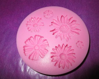 silicone mold fimo, sugar, cold porcelain clay flowers