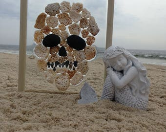 SKULL with Tan Lacey Shells from the beaches of New Jersey