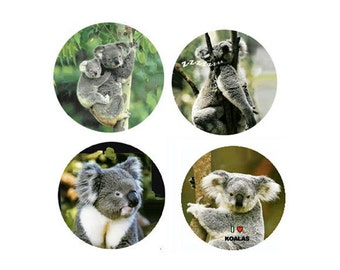 Koala Magnets:  4 Karefree Koalas for your home, your collection,  or to give as a unique gift