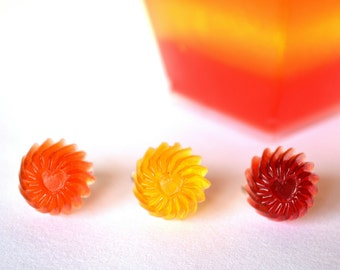 Colorful sweet jello rings