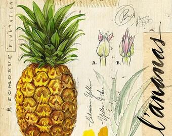 Pineapple Print, Pineapple Illustration, Tropical Print, Tropical Illustration