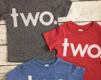Children's birthday shirt, two shirt, any birthda, kid's tshirt, Birthday Tee Organic Shirt Blend boy's birthday, girl's birthday shirt