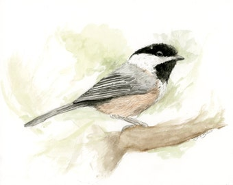 Chickadee Bird Original Watercolor Painting 8x10 Nature Forest Creatures