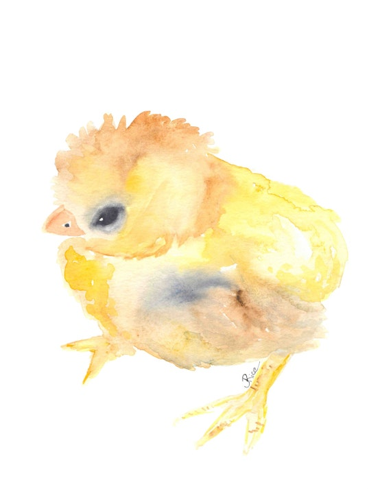 Chick Watercolor Baby Chick Baby Animal Baby Chicken