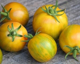 Green Zebra Tomato seeds vegetable heirloom seeds, organic seeds, vegetable garden, gardening, fried green tomatoes, tomato plants