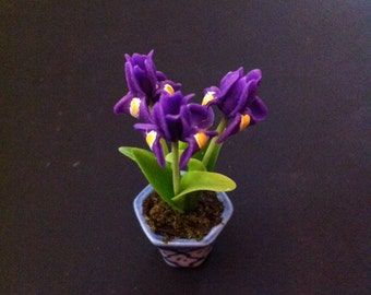 Irises, 2 Inch Miniature Potted Bouquet, Looks Like Live Flowers