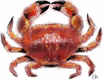 Mounted crab print // crab print // nautical art print // underwater decor // sealife decor // sealife decor // crab art print // crab art