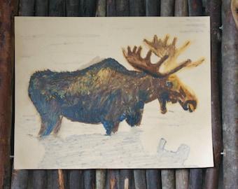 Moose in Oil Pastels