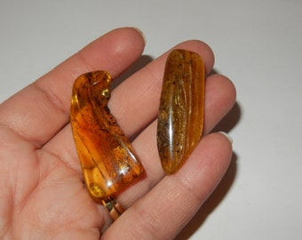 Baltic Amber- polished