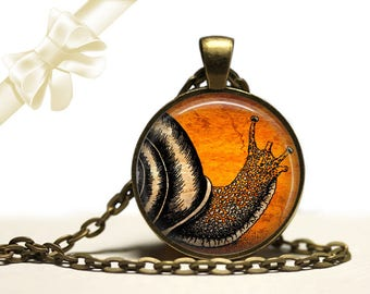 Snail Necklace brass Pendant Free Shipping Gifts for her