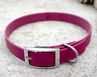 Mulberry Biothane Buckle Dog Collar
