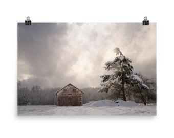 Still, Still, Still - First Snow Barn Evergreen Trees