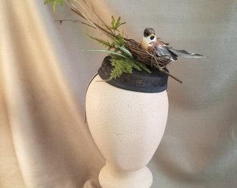 Black Pillbox Bird Nest Fascinator