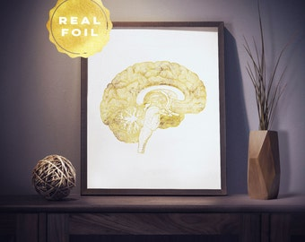 Brain Anatomy Print 4x6 - 5x7 - Gold Foil - Brain Art - Medical Student Gift - Medical Art - Medical Office Decor - Doctor Gift