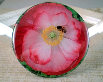 Large Bee Keeper Magnet, Pin or Pocket Mirror, 2.25'' Inch, Save the Bees, Garden Poppy Series, Bee Lover Gift, Honey Bees, Bee Club Pin, D