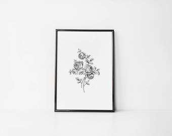 Bouquet 1 | Art Prints