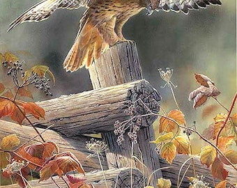 Red TaiLed Hawk Cross Stitch Pattern***L@@K***
