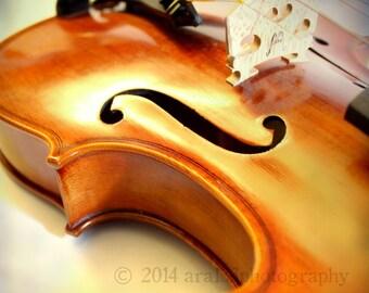 Violin Photo, Violin Picture, Music Art, Brown, Cream, Abstract Wall Art, Musical, 8x8 inch Fine Art Photograph - In a Dream