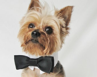 Dog Tuxedo, dog wedding attire, dog wedding collar, black bow tie, tuxedo collar, dog Wedding, Dog Collar,  dog clothes large and small pets