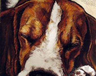 Beagle Sleepy Beagle 8x 10 Art Print