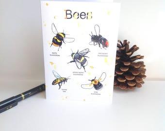 British bee greetings card. Bumblebees and honey bees.