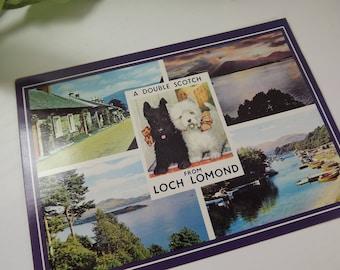 Vintage Scottish Postcard 70's Loch Lomond/ Scotch Terriers/ Double Scotch( Balmaha, Luss , Balloch)