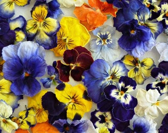 Dry Violas, Dry Flowers, Real, Wedding Confetti, Decoration, Table Decoration, Centerpiece, Real Flowers, Craft Supplies, 200 Dried Flowers