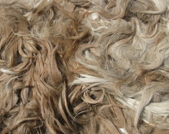 Suri Alpaca Fleece, Raw, Unwashed, for Doll Hair and Spinning, 8 ounces from Fawn Mochie