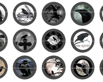 Gothic Raven Crow Pins Magnets Party Favors Gothic Wedding Favor Pin Magnet Gift Sets Fridge Magnets Poe Raven