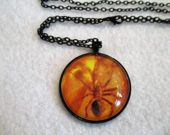 Large Spider in AMBER Print Cabochon PENDANT Necklace