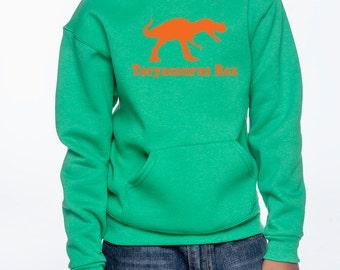 Personalized dinosaur sweatshirt, hoodie,  T rex dinosaur shirt, boys dinosaur hooded sweatshirt, gifts for boys