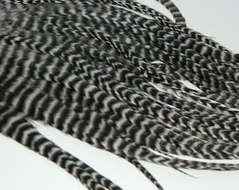NATURAL GRIZZLY PREMIUM Thick Tapered Hair Feather Extensions, 11 to 13 Inches Long