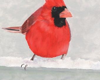 Red Cardinal Bird Print - Garden Wildlife Home Decor Wall Art 8x10 Giclee