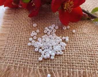 Bag of 20G of seed beads 2 mm white pearls