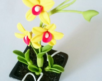 Miniature Polymer Clay Flowers Supplies Tropical Orchids, Dendrobium