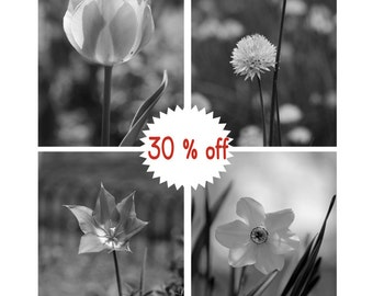 Black and white print set of 4 floral photographs, powder room prints, grey wall decor, flower wall art set, vertical bathroom pictures 8x10