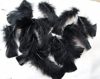 Terrific Turkey plumage, BLACK, craft feather, bulk wholesale lot, costume supply