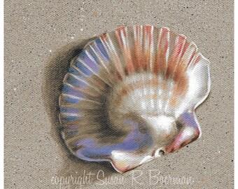 Fine Art Print 8 x 8 Colorful Shell Sitting on Sandy Beach