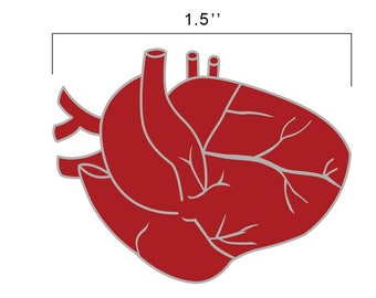 Heart Anatomy Pin