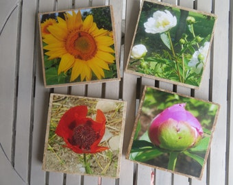 Photo Coaster - Flowers (2)