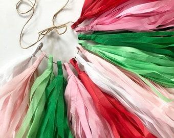 STRAWBERRY SHORTCAKE THEME tassel garland decorations classroom summer baby shower girl first birthday red green white blush pink high chair