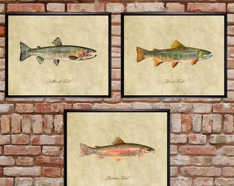 Trout Print Set of 3, Fish Print Trout Poster Gift for Fisherman Fishing Gift Freshwater Fish Fly Fishing #vi1105