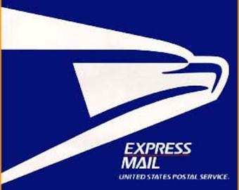 Express Mail Upgrade Shipping Service and Rush Order -First Class to Express Mail Shipping (USA Only)