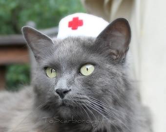 Infirmière chat chapeau - Vintage Style Pet infirmière - animaux Halloween Costume - chat Photo Prop - cobaye chapeau - Bearded Dragon chapeau - furet