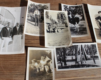 Vintage Collection of Seven 1915-1950 Photos