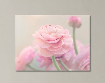 """Pink Ranunculus Canvas Art, Nursery Room Decor, Pink Girls Room Art, Floral, Shabby Chic, Pastel, Gallery Wrap """"Delicate Pink"""""""
