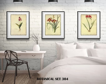 3 Botanical Prints - Matted and Framed - Free Shipping - Red Floral Prints - Black Or  White Frames - In 4 Sizes - Set of 3 Framed Prints