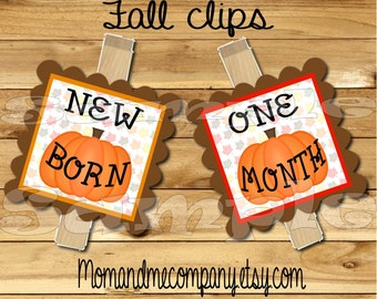 Photo clip holder First year photo clips Month photo banner first birthday photo banner monthly banner first year banner chalkboard Fall