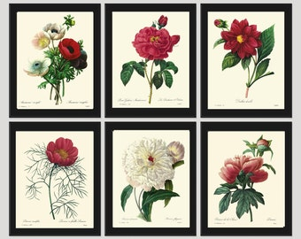 Botanical PRINT SET of 6 Art Redoute 122 Beautiful Flowers Red Roses Peony Antique Spring Summer Garden Plate to Frame Home Wall Room Decor